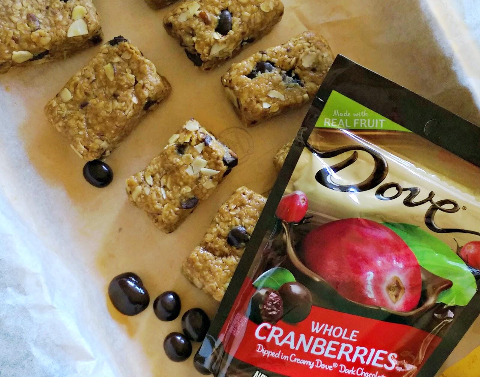 No-Bake DOVE® Fruit Trail Mix Bars #LoveDoveFruits #ad