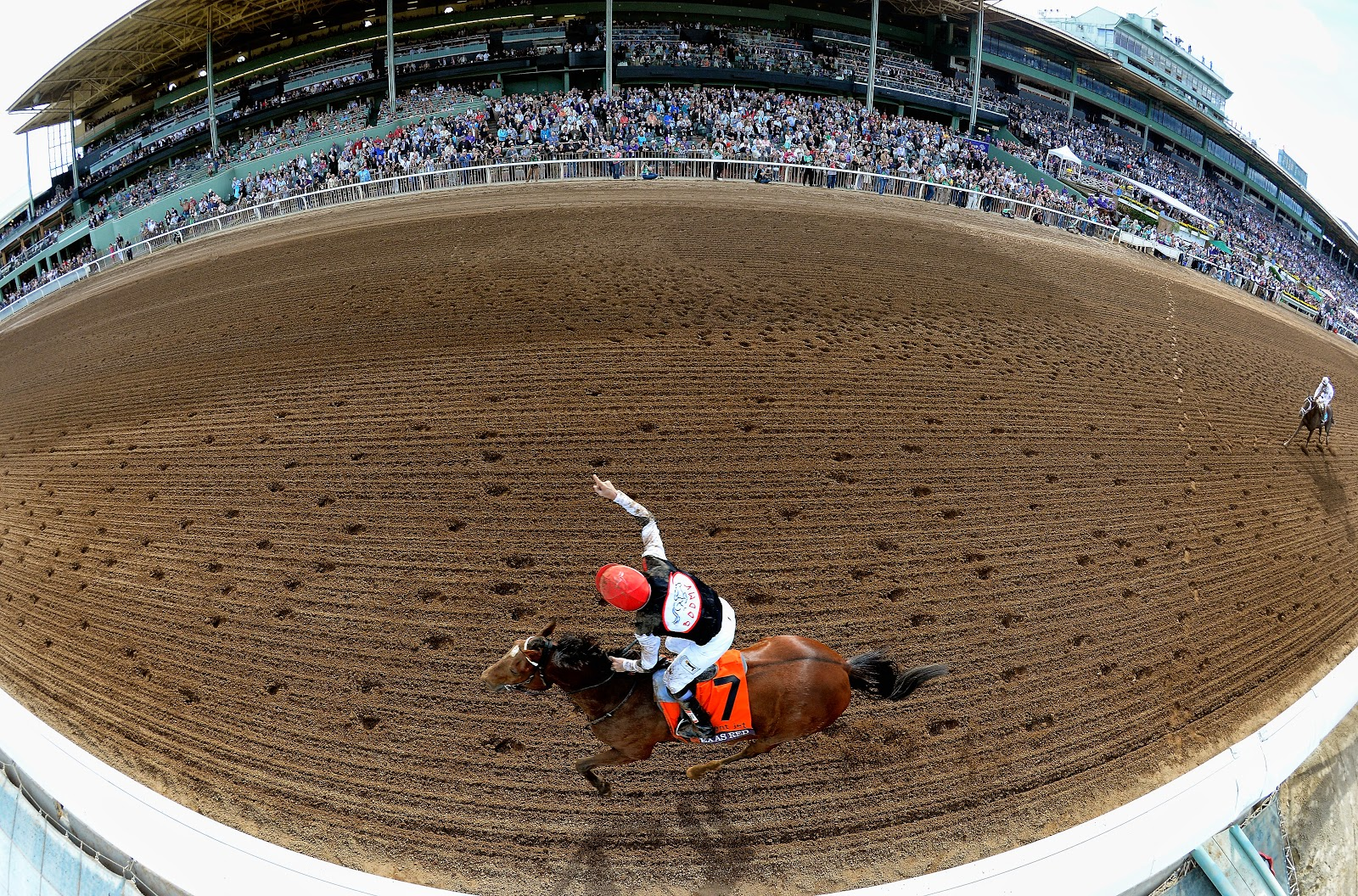 2014 Breeders' Cup Classic Photos & Pictures