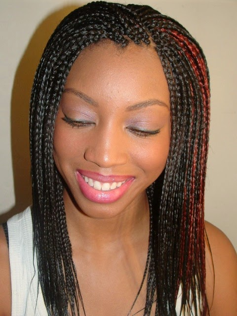 Braided Hairstyles For Black Women 20142015  Life Style Trend