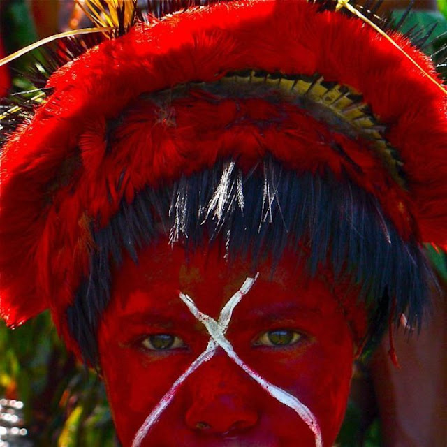 modern life of papuans 06 Modern Life Of Papuans Photo Video Picture Image