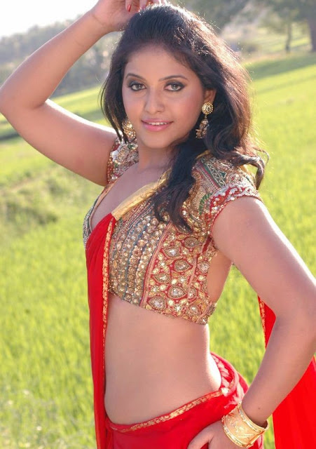 Anjali in Red Maroon Saree with Golden Zari Blouse for Parties