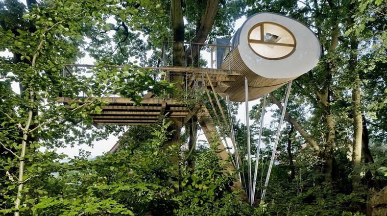 Casa del árbol elíptica ofrece un agradable escape en el bosque