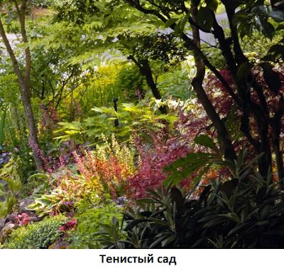 тенистый-сад