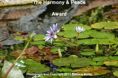 Harmony & Peace Award December 2014