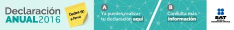 Declaración anual 2016