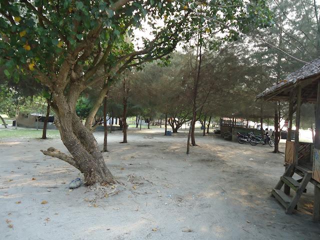 Pantai putra deli yang terletak di desa pantai labu