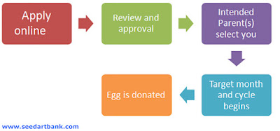 egg donor application form