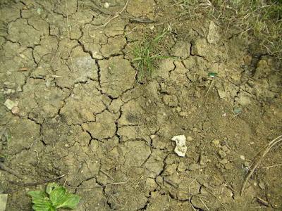 Ground Soil