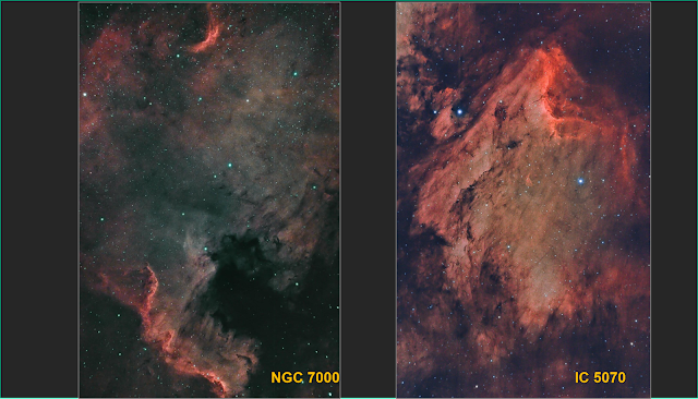 March 2020 APSIG Show and Tell Image of the Month