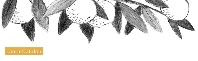 Laura Catalán, ilustración