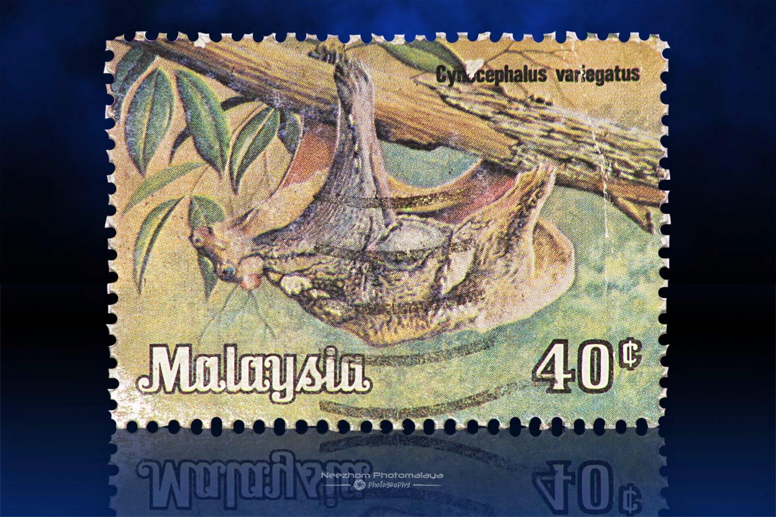 National Animals Series 1979 stamps - 40 Sen Cynocephalus Variegatus