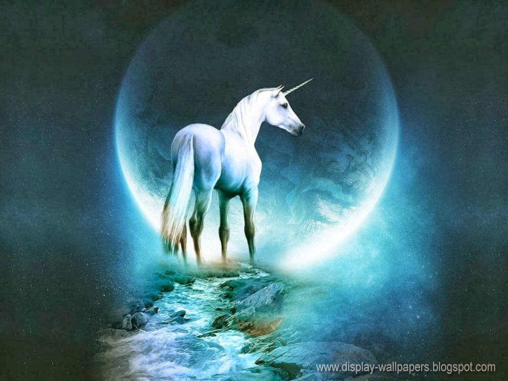 Wonderful   Wallpaper Horse Unicorn - Latest-Outstanding-Animated-Wallpapers-8  Perfect Image Reference_869573.jpg