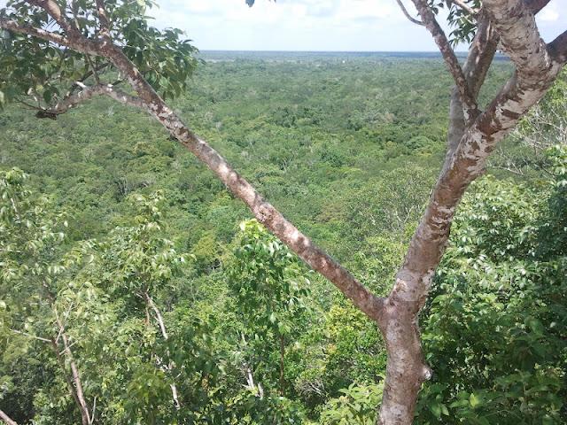 ruinas mayas coba