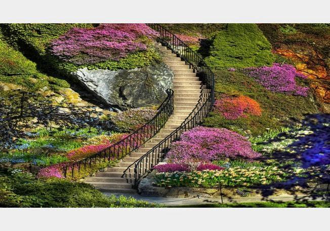 أجمل 10 حدائق فى العالم .. 68229-1362401784.jpg