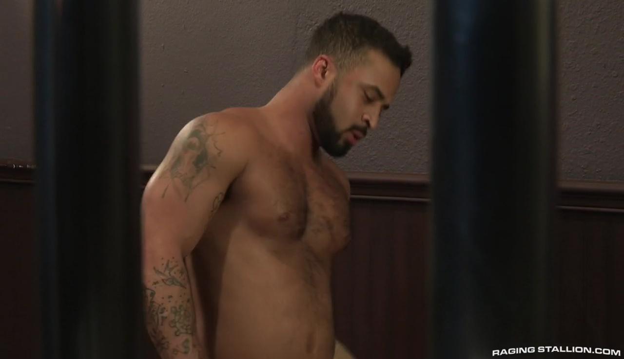 hairy wog gay sex pics