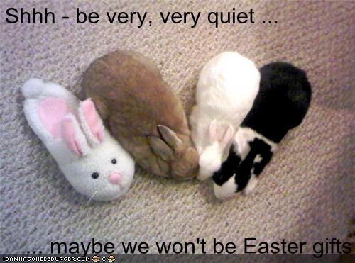 Funny Meme For Easter : Easter memes home facebook
