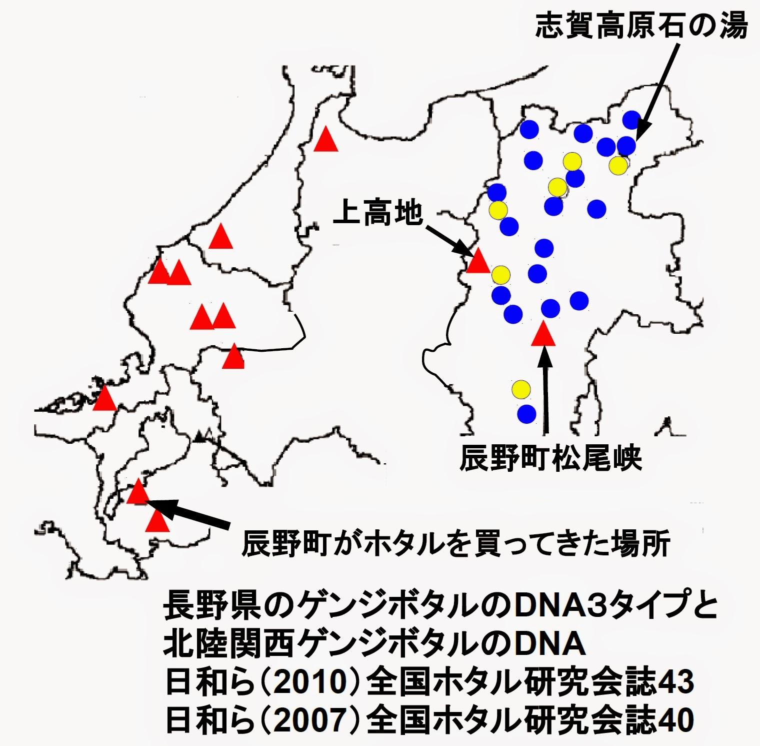 北陸関西と長野県のゲンジボタルのDNA3タイプ