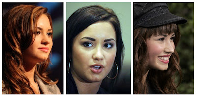 Demi Lovato Nose Job