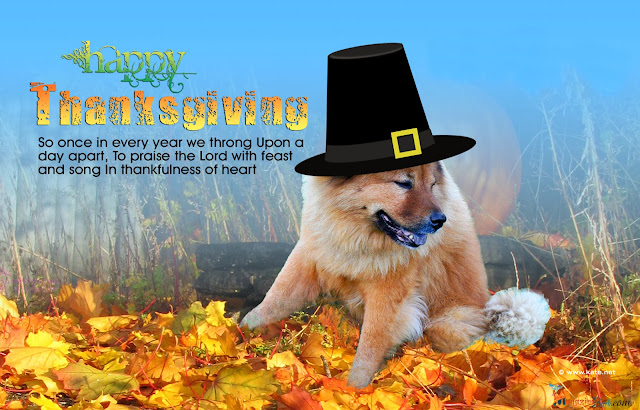 Happy Thanksgiving Day Everyone Wishes Greeting Cards Images 2013 (5)