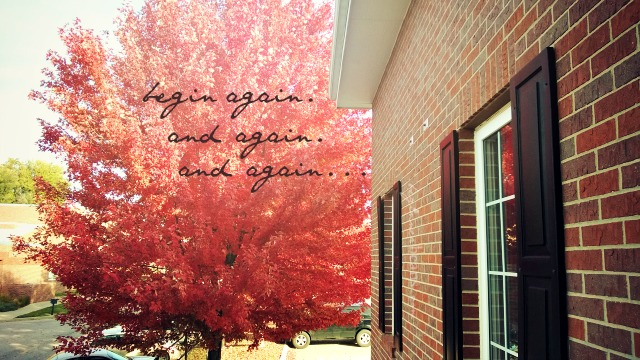 31 Lessons from an Epic Beginner // 31: Begin again. And again. And again...