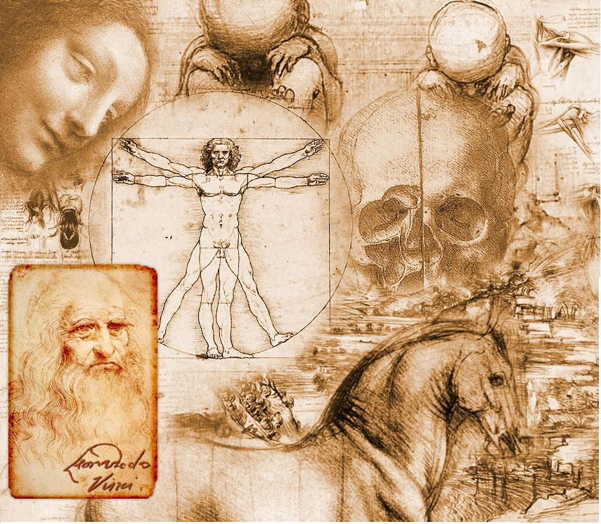 Vista Art Projects: Leonardo da Vinci Anatomy Drawings