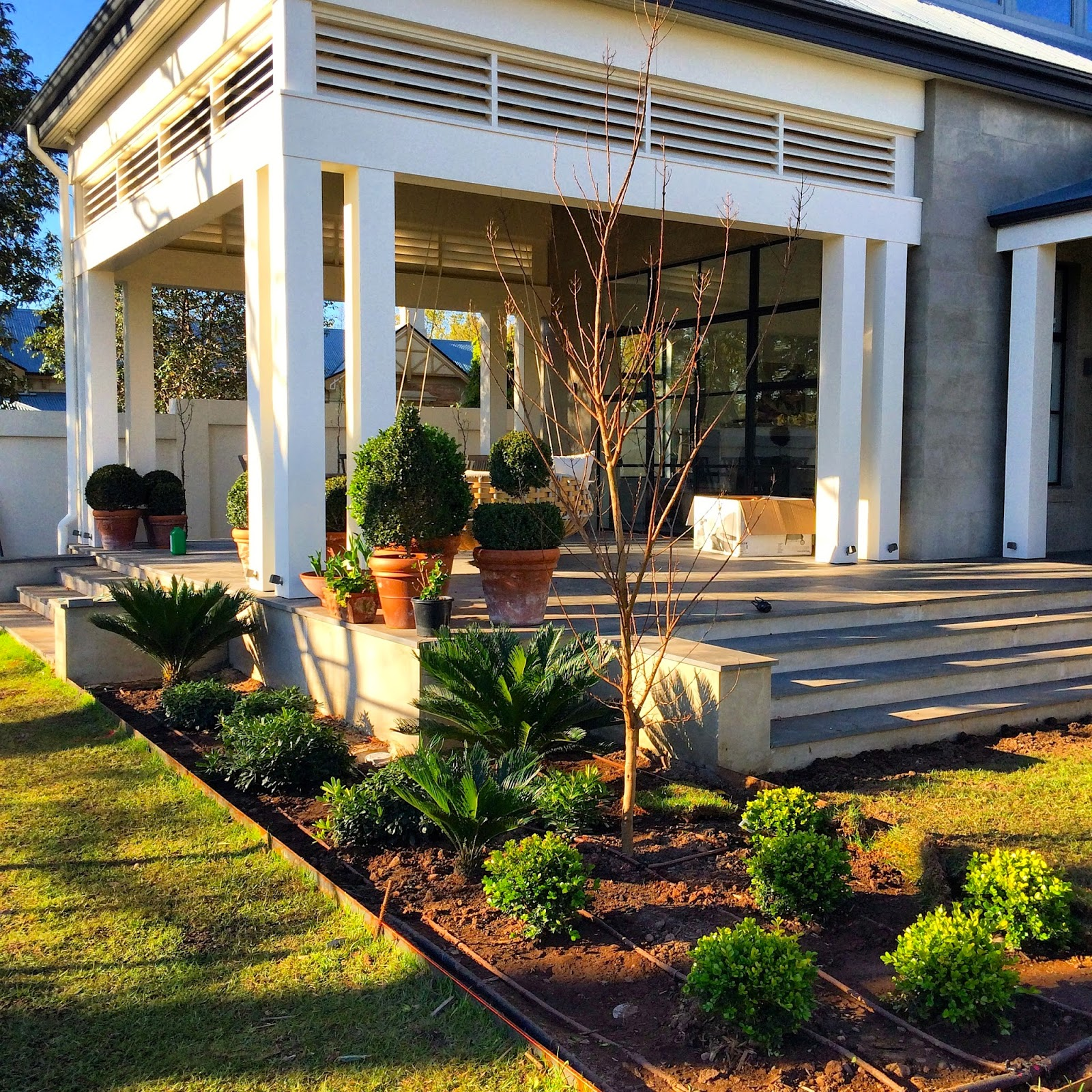 Adelaide villa bits and pieces garden progress lunch for Garden design adelaide