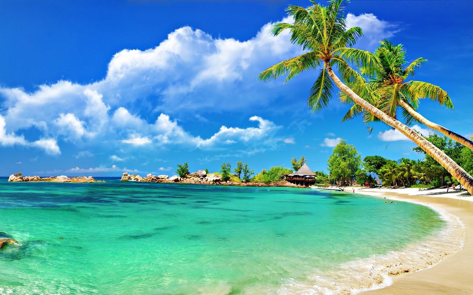 "wallpaper: wallpaper: gift of nature ""sea beach natural paradise of"