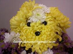 Cachorrinho de crisântemos amarelos e brancos
