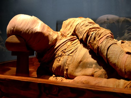 Mummy, Michael C. Carlos Museum