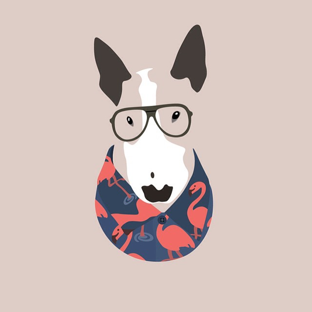 Hipster Pet Portraits