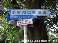 自転車道入口