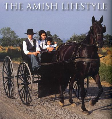 amish society vs. modern society essay Get an answer for 'how is the world of the book the giver related to ourshow is the world of the book the giver related to ours' and  as in modern society.