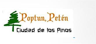 POPTUN PINO