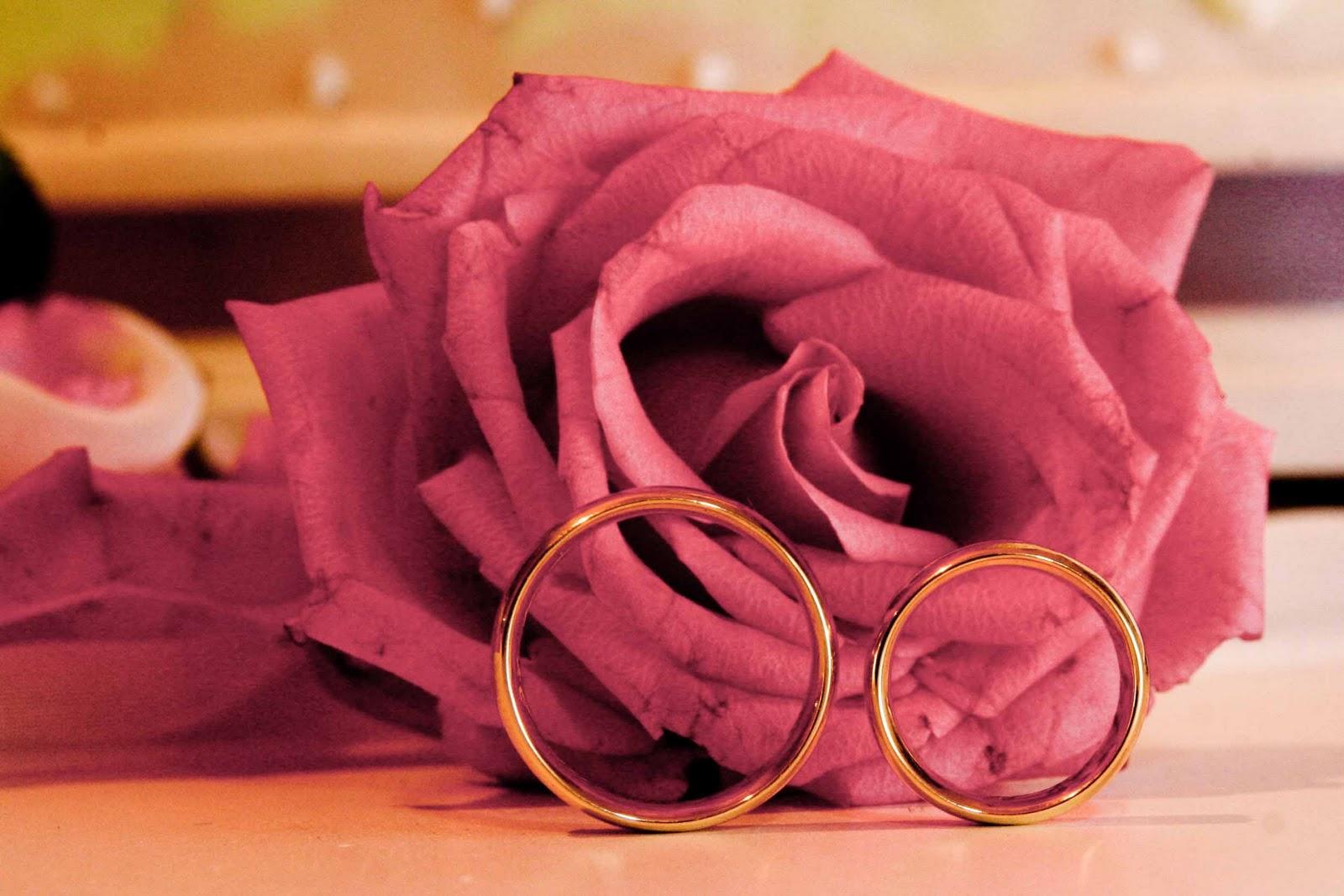 "rosas no jardim de deus : rosas no jardim de deus:FLORES NO JARDIM: Aliança eterna ""JESUS"""