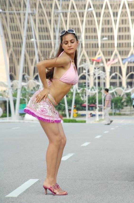 shraddha arya hot photos   cinema65 gallery