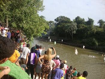 Público observa chegada dos Boieiros