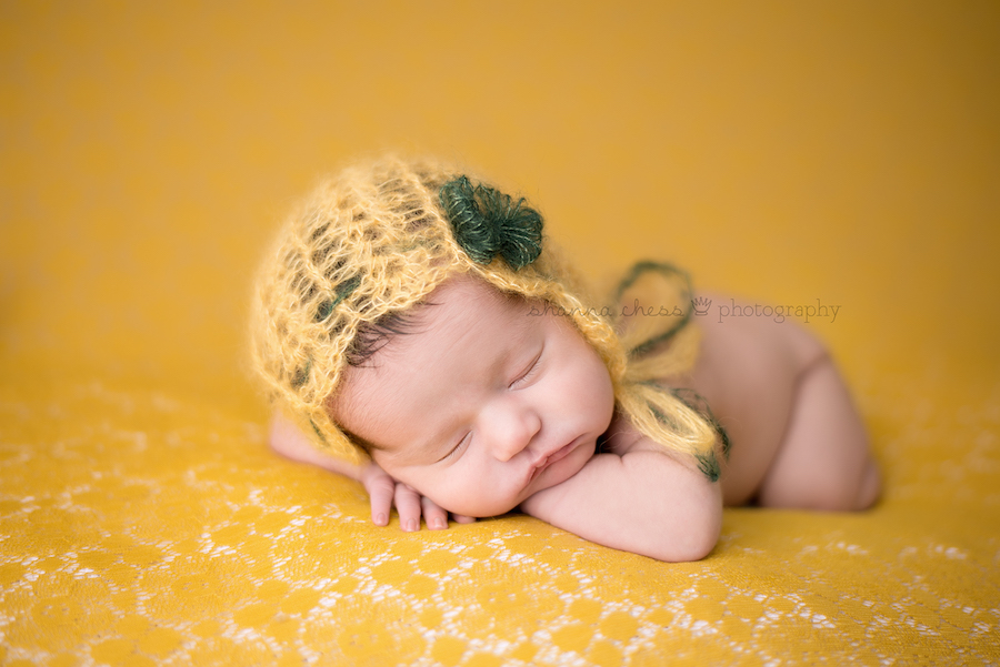 eugene springfield oregon newborn photography yellow green