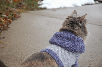 http://www.ravelry.com/patterns/library/cat-hoodie