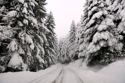 Snowfall, Road,  Le Bessat, Village, Saint-Etienne, Nature, Weather, View,