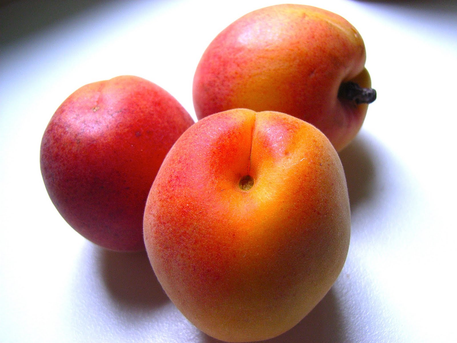 cox orange apfel erntezeit
