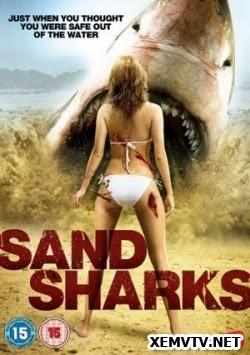 Cá Mập Cát - Sand Sharks
