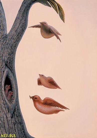 Hình ảnh ảo giác nghệ thuật :)