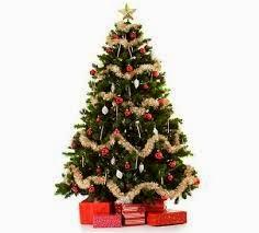 imagen de bellos arboles de navidad