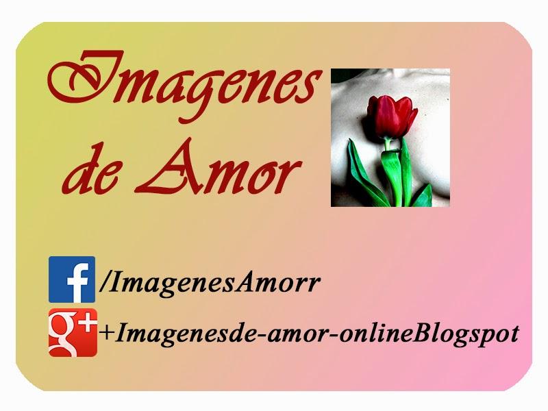 ver imagenes de amor online desmotivaciones con frases poemas rosas para facebook emos enamorados