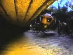 عجائب الطبيعة ـ هجوم الدبابير الصفراء على خلية نحل