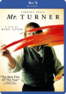 Sr. Turner [2014] Audio Latino BRrip XviD [NL][RG][UP][UD][1F]