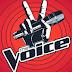 مشاهدة حلقات برنامج the Voice ذا فويس الموسم الثاني 2014 كاملة