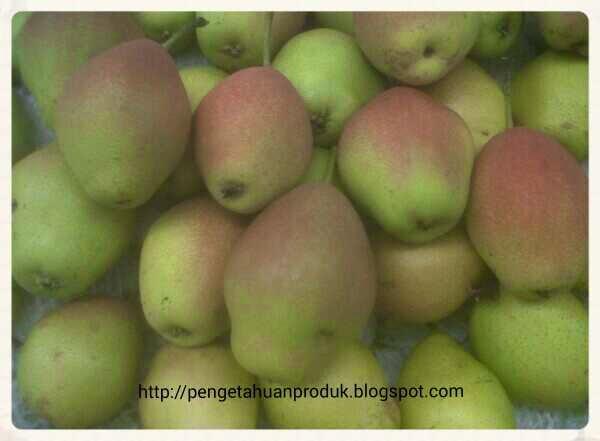 Pear Xiang Lie Terbaik Dikelasnya