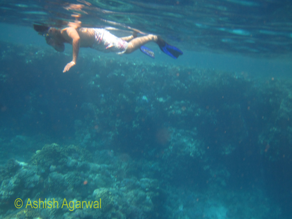 Photo of a person doing snorkeling, taken from under the water surface using a water proof camera