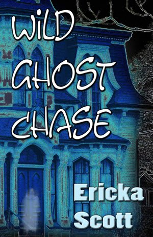 Wild Ghost Chase